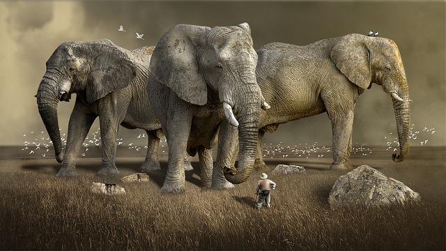 【動物雑学】最大の動物は?クジラ、ゾウ、ワニ~大迫力の動物たち。